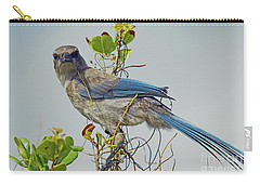 Florida Juvie Scrub Jay Carry-all Pouch