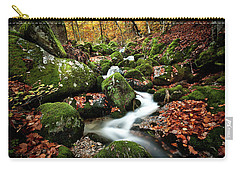 Carry-all Pouch featuring the photograph Flow by Jorge Maia