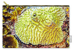 Carry-all Pouch featuring the photograph Flower Coral by Perla Copernik
