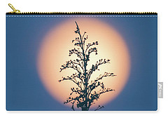Flower Moon May 2017 Square Carry-all Pouch by Terry DeLuco