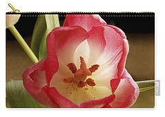 Carry-all Pouch featuring the photograph Flower Tulip by Nancy Griswold