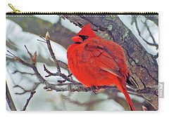 Fluffed Up Male Cardinal Carry-all Pouch