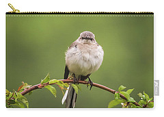 Fluffy Mockingbird Carry-all Pouch by Terry DeLuco