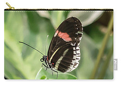 Carry-all Pouch featuring the photograph Flutterby by Cathy Donohoue