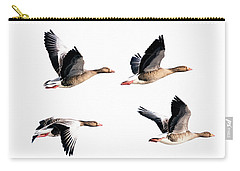 Flying Geese Carry-all Pouch