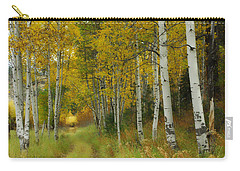 Follow The Light Carry-all Pouch by Donna Blackhall