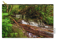 Carry-all Pouch featuring the photograph Forest Falls by Christopher Holmes
