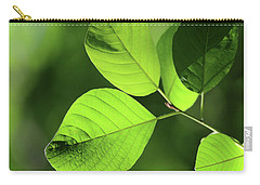 Forest Green 11 Carry-all Pouch by Mary Bedy