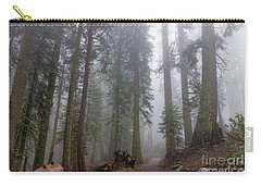 Carry-all Pouch featuring the photograph Forest Walking Path by Peggy Hughes