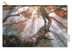 Forest With Fog And Sun Rays Carry-all Pouch