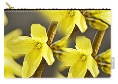 Forsythia Three Carry-all Pouch