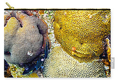 Carry-all Pouch featuring the photograph Foureye Butterflyfish by Perla Copernik