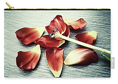 Fragile Carry-all Pouch by Karen Stahlros