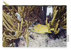 Carry-all Pouch featuring the photograph French Grunt Swimming by Perla Copernik