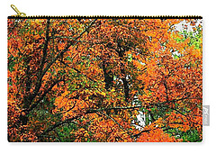 Carry-all Pouch featuring the photograph Fresco Autumn Diptych Left by Ellen Barron O'Reilly