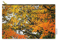 Carry-all Pouch featuring the photograph Fresco Autumn Diptych Right by Ellen Barron O'Reilly