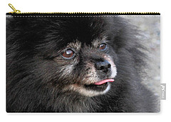 Carry-all Pouch featuring the photograph Fresh Dog by Debbie Stahre