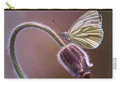 Fresh Pasque Flower And White Butterfly Carry-all Pouch by Jaroslaw Blaminsky