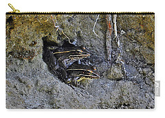Carry-all Pouch featuring the photograph Friendly Frogs by Al Powell Photography USA
