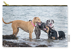 Friends Carry-all Pouch by Stephanie Hayes