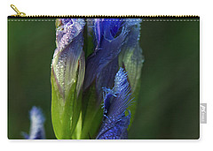 Carry-all Pouch featuring the photograph Fringed Getian With Dew by Ann Bridges