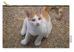 Fripp Island Fur Baby Carry-all Pouch