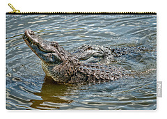 Carry-all Pouch featuring the photograph Frisky In Florida by Christopher Holmes