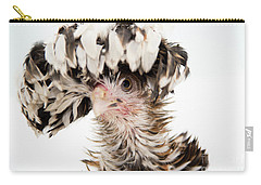 Frizzle Tolbount Polish Hen Carry-all Pouch