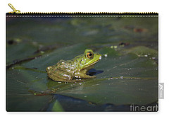 Froggy 2 Carry-all Pouch by Douglas Stucky