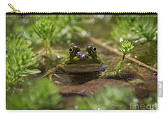 Froggy Carry-all Pouch by Douglas Stucky
