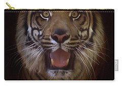 Carry-all Pouch featuring the photograph From The Darkness by Elaine Malott