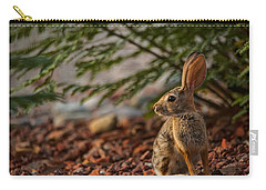 Carry-all Pouch featuring the photograph Frontyard Bunny by Dan McManus