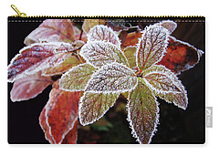 Frost Cluster Carry-all Pouch by Betsy Zimmerli