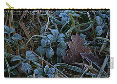 Frostings 4 Carry-all Pouch