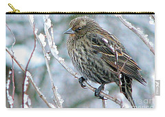 Winter's Perch Carry-all Pouch