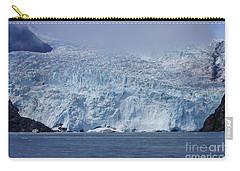 Frozen Beauty Carry-all Pouch by Jennifer White