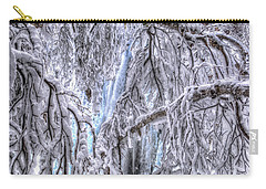 Frozen Falls Carry-all Pouch by Fiskr Larsen