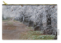 Frozen Pathway Carry-all Pouch