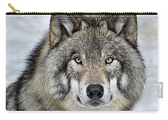 Carry-all Pouch featuring the photograph Full Attention  by Tony Beck