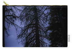Full Moon In The Woods Carry-all Pouch by Cat Connor