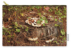 Carry-all Pouch featuring the photograph Fungi And Needles And Tree Trunk  Oh My by Carol Lynn Coronios