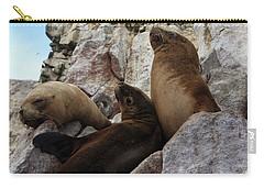 Fur Seals On The Ballestas Islands, Peru Carry-all Pouch by Aidan Moran