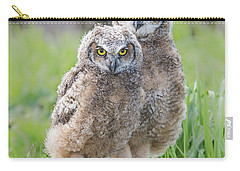 Furrballs Carry-all Pouch