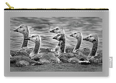 Gaggle Of Goslings Carry-all Pouch