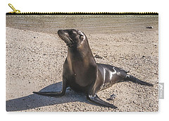 Galapagos Sea Lion Carry-all Pouch