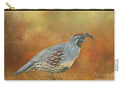 Gambel Quail In Death Valley  Carry-all Pouch by Janette Boyd