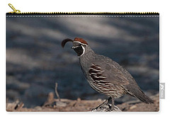 Gambel's Quail Carry-all Pouch by Martina Thompson