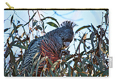 Carry-all Pouch featuring the photograph Ganggang Cockatoo - Canberra - Australia  by Steven Ralser