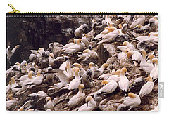 Gannet Cliffs Carry-all Pouch