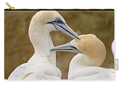 Carry-all Pouch featuring the photograph Gannet Pair 1 by Werner Padarin